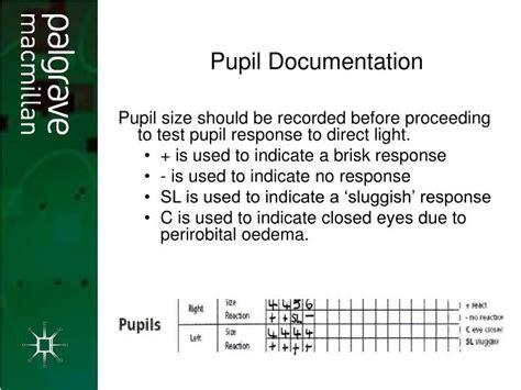 Ppt Neurological Assessment Neurological Assessment