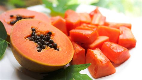 pawpaw  true native american fruit diet  life
