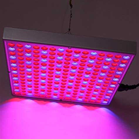 growing vegetables indoors with led lights amzdeal plant grow light led panel hydroponic l for