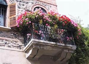 Rosen Für Balkon : balkon bepflanzen praktische tipps und wichtige hinweise ~ Michelbontemps.com Haus und Dekorationen