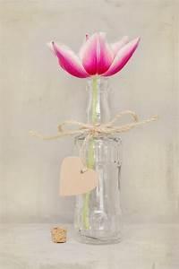 Pflanze In Flasche : kostenlose foto bl hen wei blume bl tenblatt glas herz tulpe vase flasche rosa ~ Whattoseeinmadrid.com Haus und Dekorationen