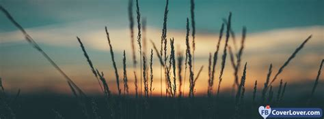 Herbs Sunset seasonal Facebook Cover