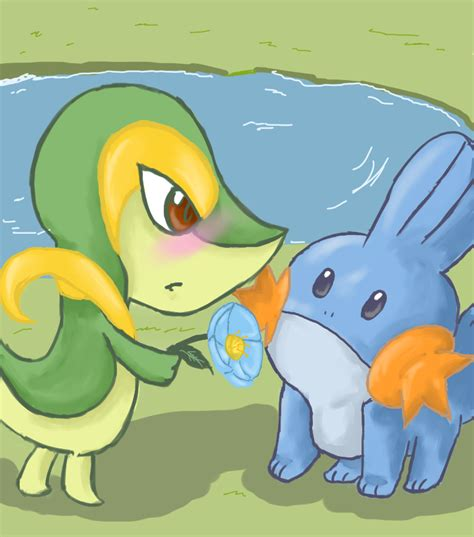 snivy and mudkip by serjssoda on deviantart