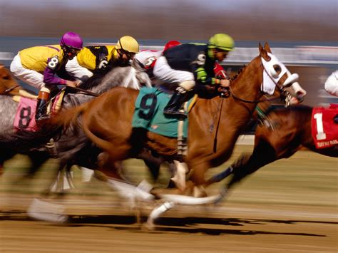 Arizona Will Allow Account Wagering For Horse And Dog Racing