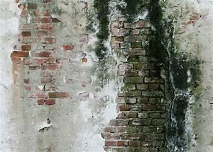 Styropor Dämmung Schimmel : schwarzer schimmel im mauerwerk wie entfernen sie ihn ~ Whattoseeinmadrid.com Haus und Dekorationen