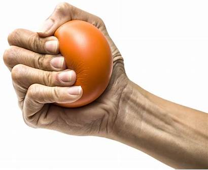 Clipart Stress Ball Ecology Transparent Holding Diet