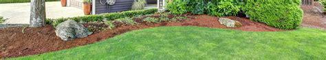 lawn grub organic 28 images grub control organic lawn care nj bucks county pa how to stop