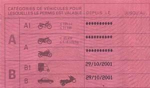 Titulaire Du Permis B : permis point archives voiture permis voiture permis ~ Medecine-chirurgie-esthetiques.com Avis de Voitures