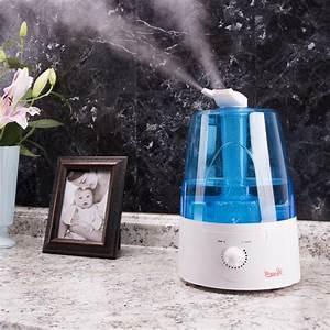 5l Home Ultrasonic Humidifier Cool Mist Dual Nozzles