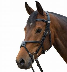 Fairfax Saddles - Snaffle grackle