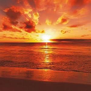 Bild Hochkant Format : home affaire glasbild idizimage sch ner tropischer sonnenuntergang am strand online kaufen otto ~ Orissabook.com Haus und Dekorationen