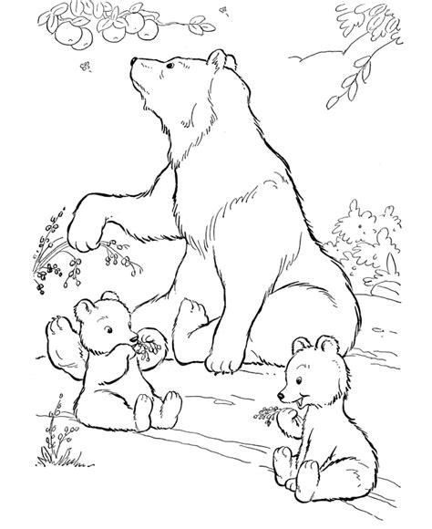 printable polar bear coloring pages  kids