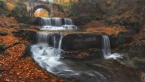 Bulgaria, bridge, waterfall, leaves, trees, autumn ...