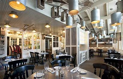 Dog University Restaurants Wayne Line Cafe Haverford