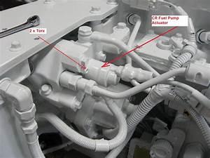Qsl  U0026 Qsc Fuel System Components