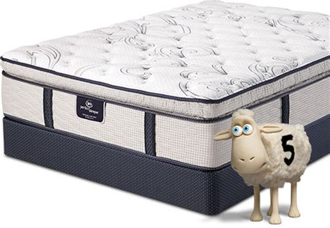 the mattress place the mattress place serta sleeperserta