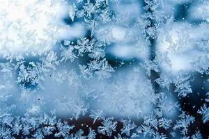 18 perfect snowflakes captured in photos | MNN - Mother ...