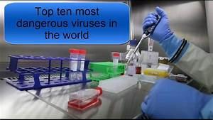 Top ten most dangerous viruses in the world - YouTube