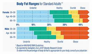 Political Calculations  What U0026 39 S Your Body Fat Percentage
