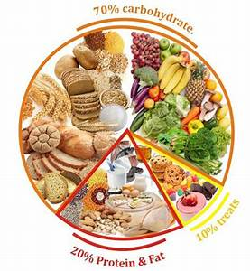Free balanced diet chart download free clip art free for Food wheel template