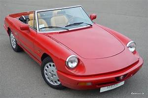 Alfa Romeo Spider Repair Manual
