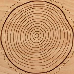 Tree Ring Diagram