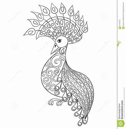 Coloring Adult Bird Zentangle Pages Books Illustartion