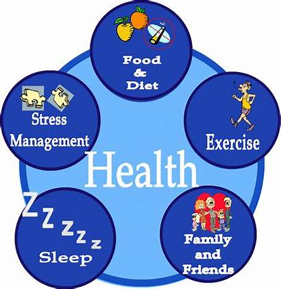 Health Diet Healthy Way Topic System Circulatory