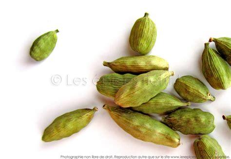 bergamote cuisine comment utiliser la cardamome en cuisine les épices