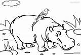 Coloring Pages Hippo Printable Template Hippopotame Coloriage Beanie Boos Cool2bkids Imprimer Templates sketch template