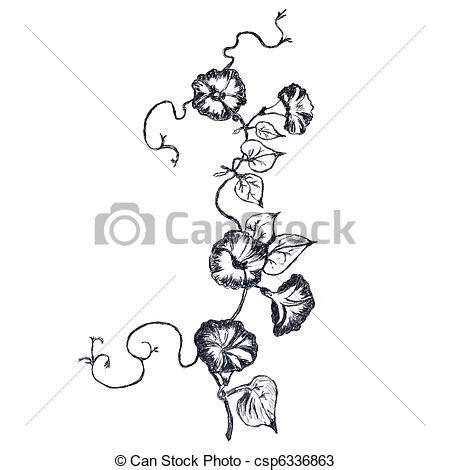 drawings  loach flowers sketch   picture drawed