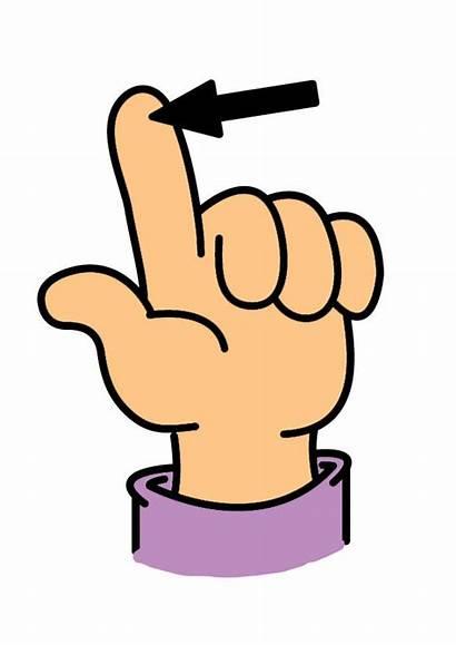 Doigt Finger Afbeelding Vinger Bild Dessin Educol