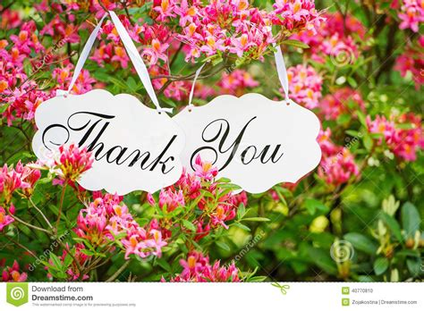 hanging bouquet thank you signage and blossom stock photo image