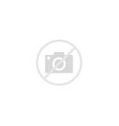 Goodnight Sleep Tight ...