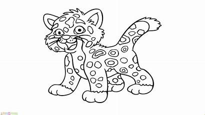 Gambar Harimau Mewarnai Coloring Tiger Kartun Drawing