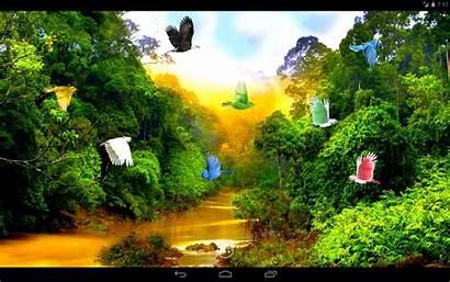 Forest River 3d App Jw Apps Desktop