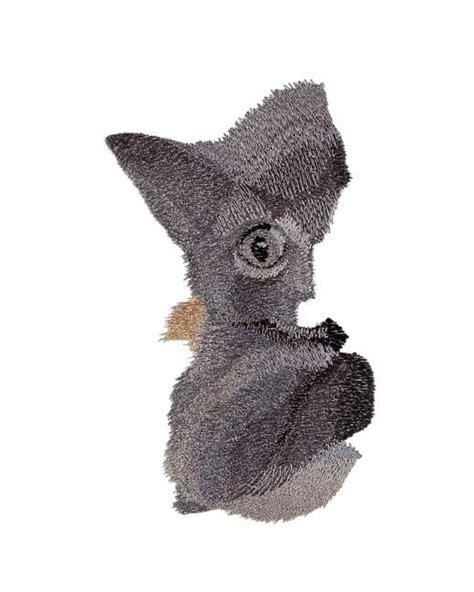 Kitten In A Hammock by Bfc1689 Large Kitten In A Hammock