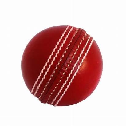Cricket Football Ball Cricketball Basketball Pe Stream