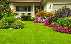 Home, garden, lawn wallpaper
