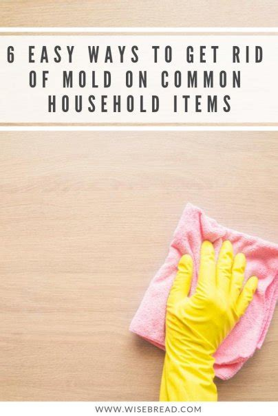 easy ways   rid  mold  common household items