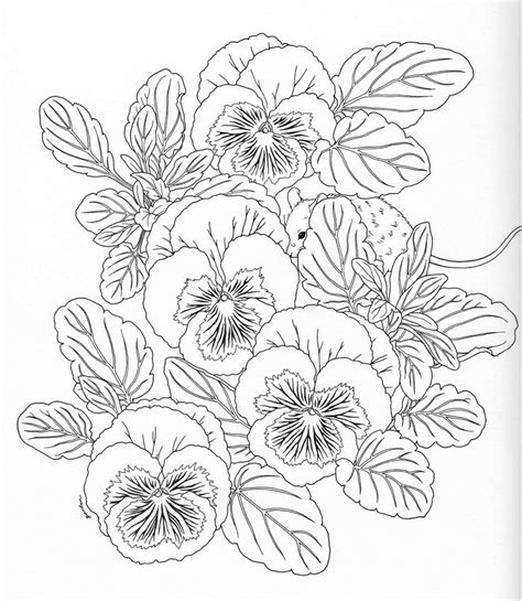 Coloring Templates For by Harmony Of Nature Coloring Book Pg 11 Color Pages