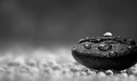 Best Digital Camera Tips For Stunning Black And White