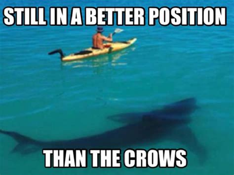 Crow Meme - the funniest crows and power memes after round 8 adelaide now