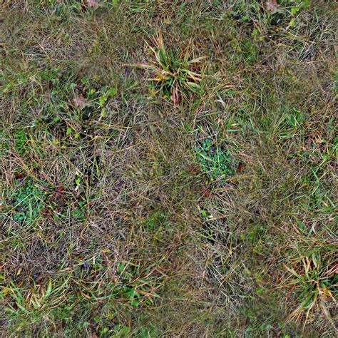 jungle floor texture forest ground textures grass 5 png opengameart org