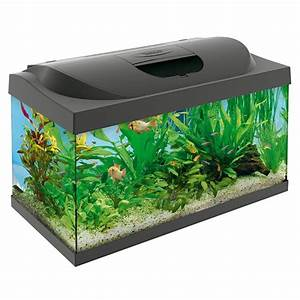 Aquarium Set Led : tetra starter line led 54l complete aquarium set ~ Watch28wear.com Haus und Dekorationen