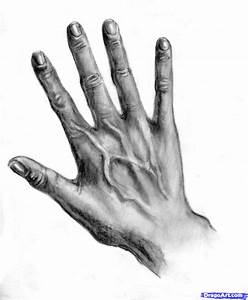 How to Draw Realistic Hands, Draw Hands, Step by Step ...