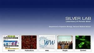 Silver Lab Laboratory Of Pamela Silver