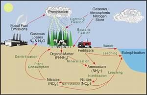 Environmental And Natural Resource Management  Cycles