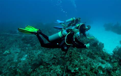 fisheries  aquatic sciences programs school  forest