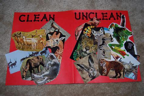 ark animals unclean noah clean noahs peterson party